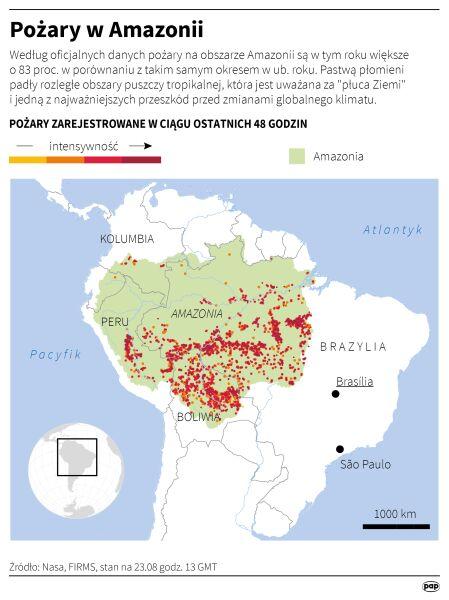 Pożary w Amazonii (PAP/Adam Ziemienowicz)