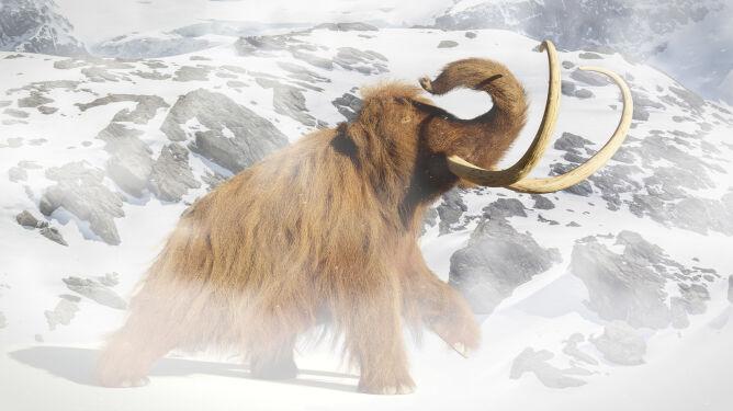 """Zbadali DNA """"starsze niż pojawienie się człowieka"""", odkryli nieznany gatunek mamuta"""