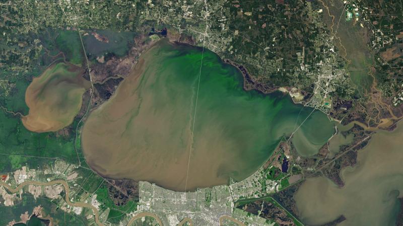 Zielona woda w jeziorze (Joshua Stevens/NASA Earth Observatory)