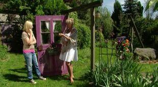 Baśniowy ogród z kolorowymi drzwiami, odc. 444